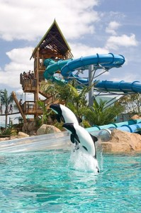 water parks in Florida Aquatica Orlando